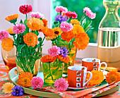 Calendula (marigold), Centaurea (cornflower)