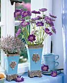 Scabiosa (Scabious Flower), Limonium (Beach Lilac)