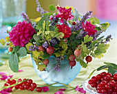 Ribes (gooseberry and currant)