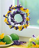 Achillea (yarrow), Lavandula (lavender)