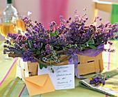 Spank basket with Lavandula (lavender), Origanum (Oregano)