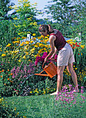 Spice up a yellow flower bed with colorful perennials