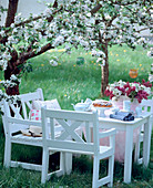 Seating under a blossoming apple tree