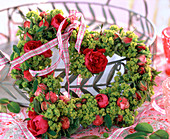 Rose lady's mantle Heart