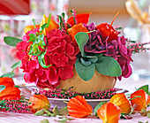 Hydrangea (hydrangea), Salvia (sage)