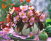 Cucurbita (pumpkin) as a vase