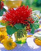 Dahlia (red cactus dahlia)