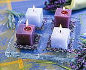 Square candles on glass plate, Lavandula (lavender flowers)
