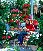 Pelargonium summer twist 'White', gen 'Toro'
