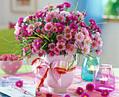 Aster (rose and pinke asters)