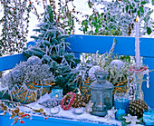 Arrangement with hoarfrost on blue bench