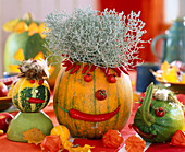 Cucurbita (pumpkin, ornamental pumpkin), as heads and animals