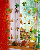 Cucurbita, Liquidambar on wire as window decoration