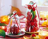 Malus (apple, ornamental apple) under glass bells, lanterns