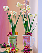 Narcissus 'Bridal Crown' in Christmas cups, tree decorations