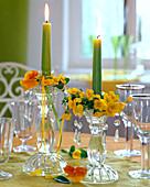 Viola sorbet 'Yellow Delight', Viola Matrix 'Orange'