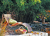 Deckchair in front of Phyllostachys (bamboo) at the pond