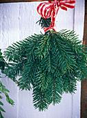 A Abies nordmanniana (Nordmann fir) bouquet