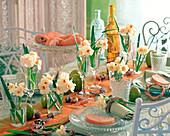 Narcissus 'Bridal Crown' (daffodil)