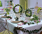 Ivy table decoration, Hedera grown in circle in white ceramic pots