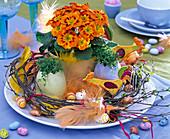 Easter, primula acaulis, ceramic eggs with cress