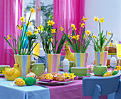 Easter breakfast table, Narcissus 'Tete À Tete' (Daffodil)
