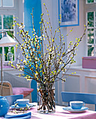 Prunus and Betula bouquet in glass vase, blue crockery