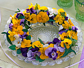 Horned violet wreath with ivy