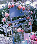 Malus (ornamental apple) and Hedera (ivy) wreath with hoarfrost