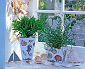 Design planters and boxes with maritime napkin deco