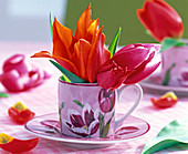 Tulipa (tulip) flowers in espresso cup with tulip motif