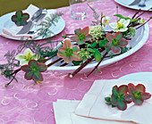 Table decoration in a flat oval bowl with Helleborus