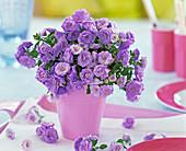 Blooming campanula carpatica bouquet in pink vase
