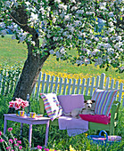 Green wooden bench and pink side table under blooming malus