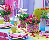 Bellis perennis in white and pink in cloth bags on the table