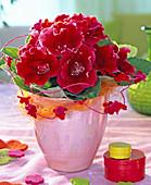 Rote Sinningia (Gloxinie) in rosa Übertopf, dekoriert mit Sisal und Filzblüten