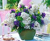 Bouquet from Syringa, Campanula glomerata