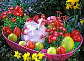 Bellis (amarant), ceramic chicken and colorful eggs