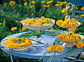 Taraxacum in etagere, in bowl and as a wreath on glass plates