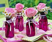 Rosa (Rosen), Matricaria (= Chamomilla, Kamille) in lila Glasflaschen
