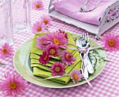 Flowers of Rose Argyranthemum, asparagus