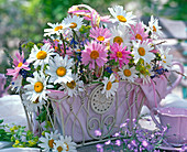 Arrangement of Leucanthemum (daisies), pink and white, Alchemilla