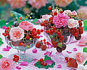 Flowers of Rosa, Fragaria, Ribes