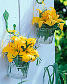 Yellow Lilium (lily) flowers hung in glasses on the wall