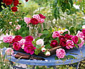 Pink in glasses and on wooden tray, blue table