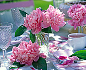 Paeonia (peony), pink on the table, glasses