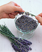 Making lavender sachets yourself
