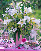 Bouquet of Lilium longiflorum, white, fragrant, Alchemilla