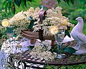 Flowers of Sambucus (elderberry) in spanking basket