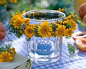 Wreath of anthemis flowers, anethum, thymus